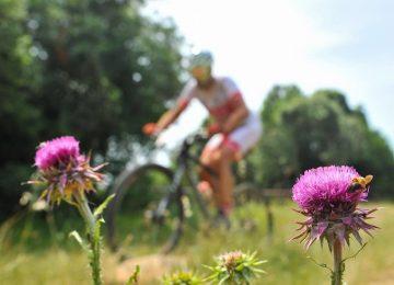 01 Biciklisticka ruta