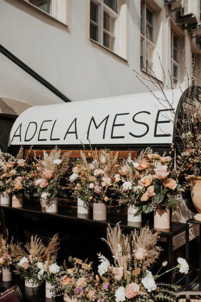 Adela Mese - Spring Fling
