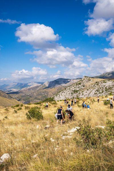 Hrvatska je zelenija za 5.000 sadnica (5)
