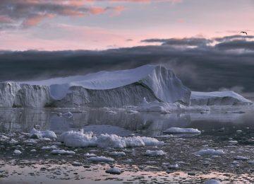 Kronike globalnog zatopljenja (6)
