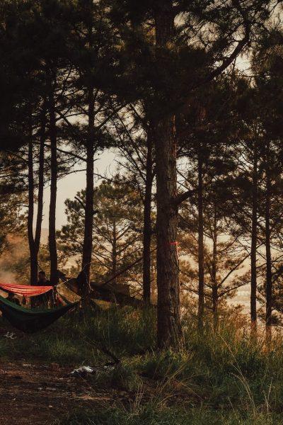 Robinzonski kamp na Mrežnici – veliki potencijal za pravi eko turizam
