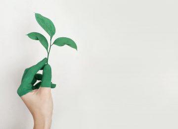 Kako malim životnim promjenama možete učiniti puno za prirodu?
