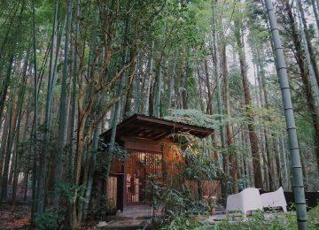 Bambus više nije materijal budućnosti - neka postane dio vaše svakodnevnice